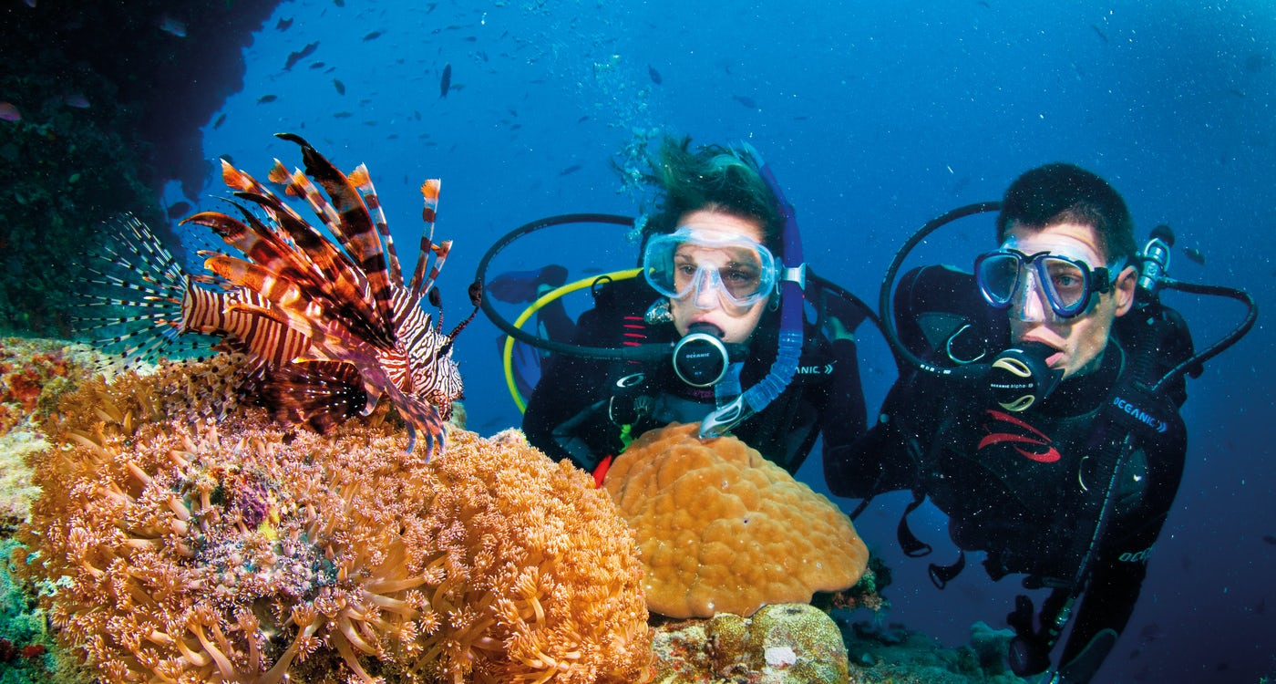 Scuba Diving In Port Douglas Freestyle Resort